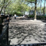 dewitt clinton dog run 2