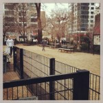 union sqaure dog run
