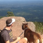 Dogcation2_Catskills_OverlookMountain_RainbowKirby2